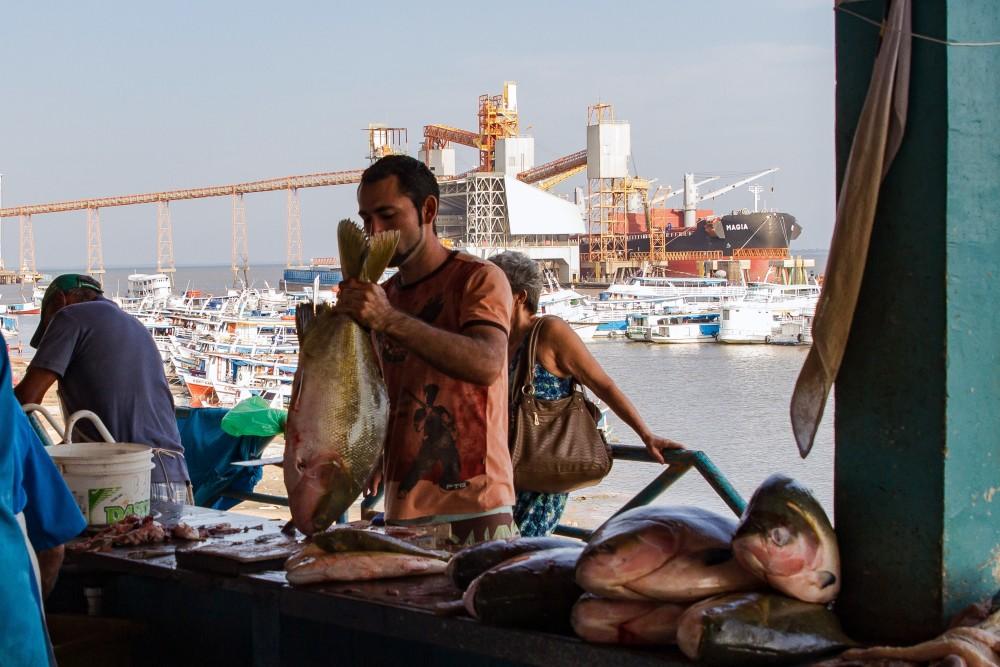 Mercado-de-Peixes-STM-Thais-Borges-1487357181